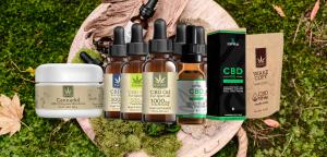 ¿Dónde comprar cannabis medicinal en México?